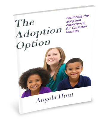 The Adoption Option